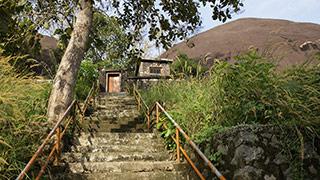 रॉक कट केव मंदिर, कवियूर