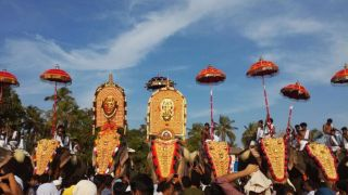 Elephant Procession of Chinakathoor Pooram