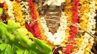 Panachikadu Navarathri Festival
