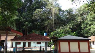 Valliyoorkavu Mahotsavam